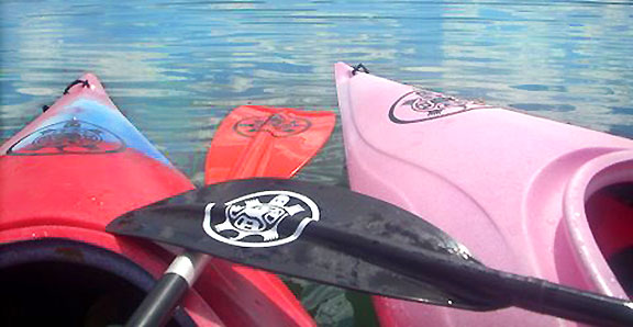 tribal turtle Kanuyak Decals and Stickers for Canoes, Kayaks, cars and trucks